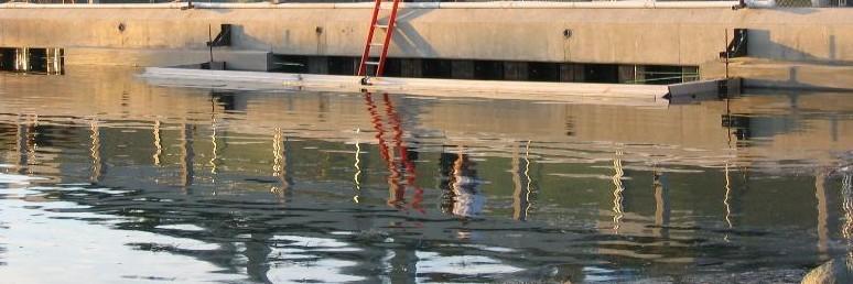 Open Top Cofferdam – San Diego Marriott Seawall Repair